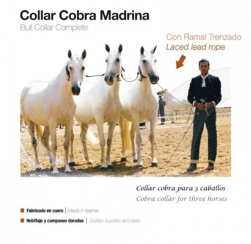 Cobra set for 3 mares (lote de yeguas)
